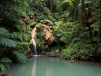 How to be a 21st century Robinson Crusoe: visit the Azores