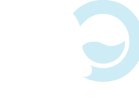 Accessible Oceans Foundation